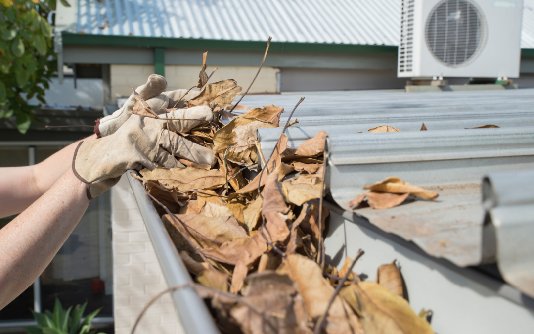 Fall is the Best Season for Cleaning Your Gutters